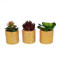 Цветы искусственные для декора Gold в горшке, из керамики, разные цвета, искусственные цветы, декоративные