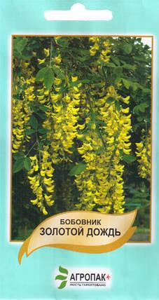 Семена Бобовник Золотой дождь 0.5 г W.Legutko 6056, фото 2