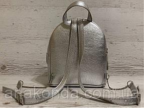 111с Натуральная кожа, Городской рюкзак Кожаный рюкзак Из натуральной кожи Рюкзак женский металлик серебро, фото 3
