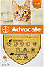 Bayer Advocate для кошек до 4 кг, 1 пипетка