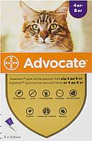 Advocate Bayer для кішок від 4 до 8 кг, 1 піпетка