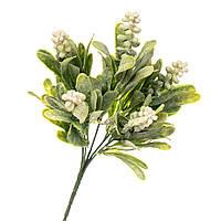 Квітка Мускарі біла 2001-005WT