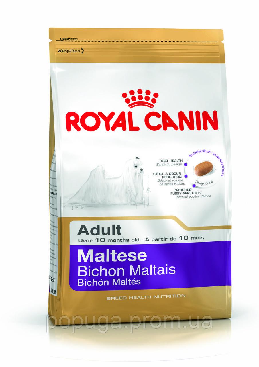 Royal Canin Maltese Adult корм для мальтийской болонки, 0,5 кг