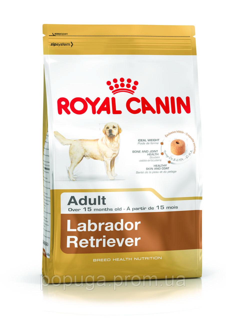 Royal Canin Labrador Retriever Adult корм для лабрадора, 3 кг