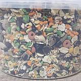 LoLo Pets basic for Exotic MIX Экзотическая смесь для грызунов и кроликов, 1,4 кг, фото 2