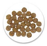 Natures Protection PUPPY STARTER корм для лактуючих сук і цуценят від 4 до 12 тижнів, 2 кг, фото 2
