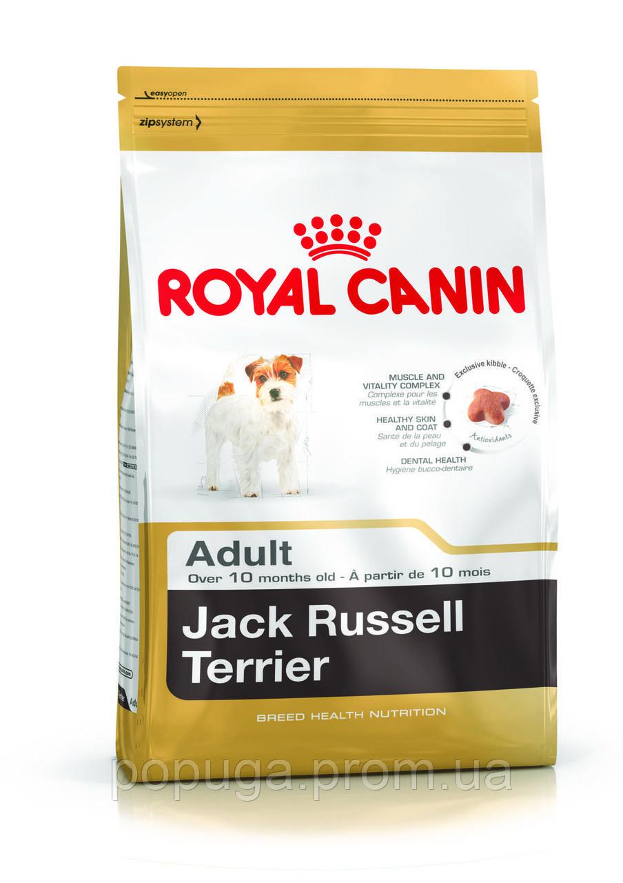 Royal Canin Jack Russell Terrier Adult корм для собак породы Джек Рассел терьер, 3 кг
