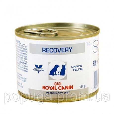 Royal Canin RECOVERY лечебный влажный корм для собак и кошек, 195 г