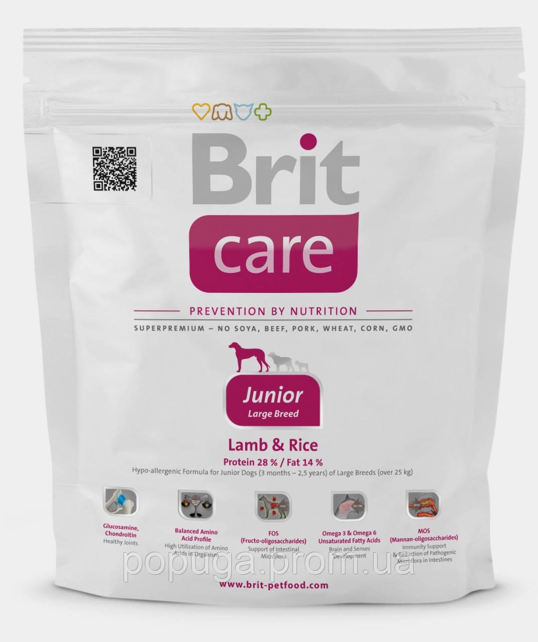 Корм Brit Care Junior Large Breed Lamb & Rice для щенков крупных пород с ягненком и рисом, 1 кг