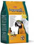 Корм для крупных попугаев Padovan GRANDMIX PAPPAGALLI, 2 кг, фото 2