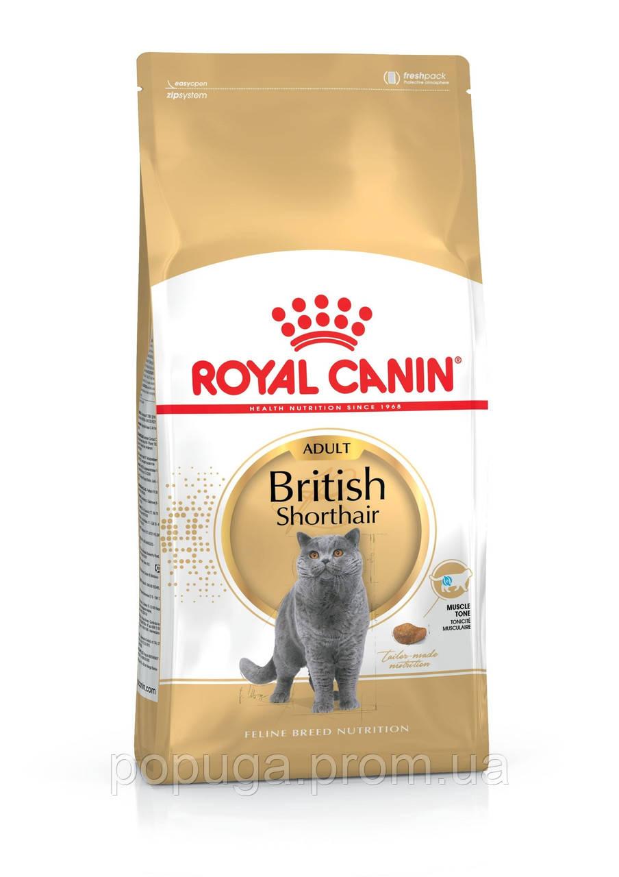 Корм Royal Canin British Shorthair Adult для котів породи британська короткошерста, 400 г