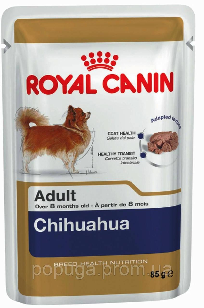 Консерви Royal Canin Chihuahua Adult для Чихуахуа, 85 г