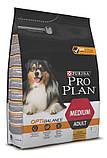 PRO PLAN OPTIBALANCE для взрослых собак средних пород КУРИЦА, 14 кг, фото 3