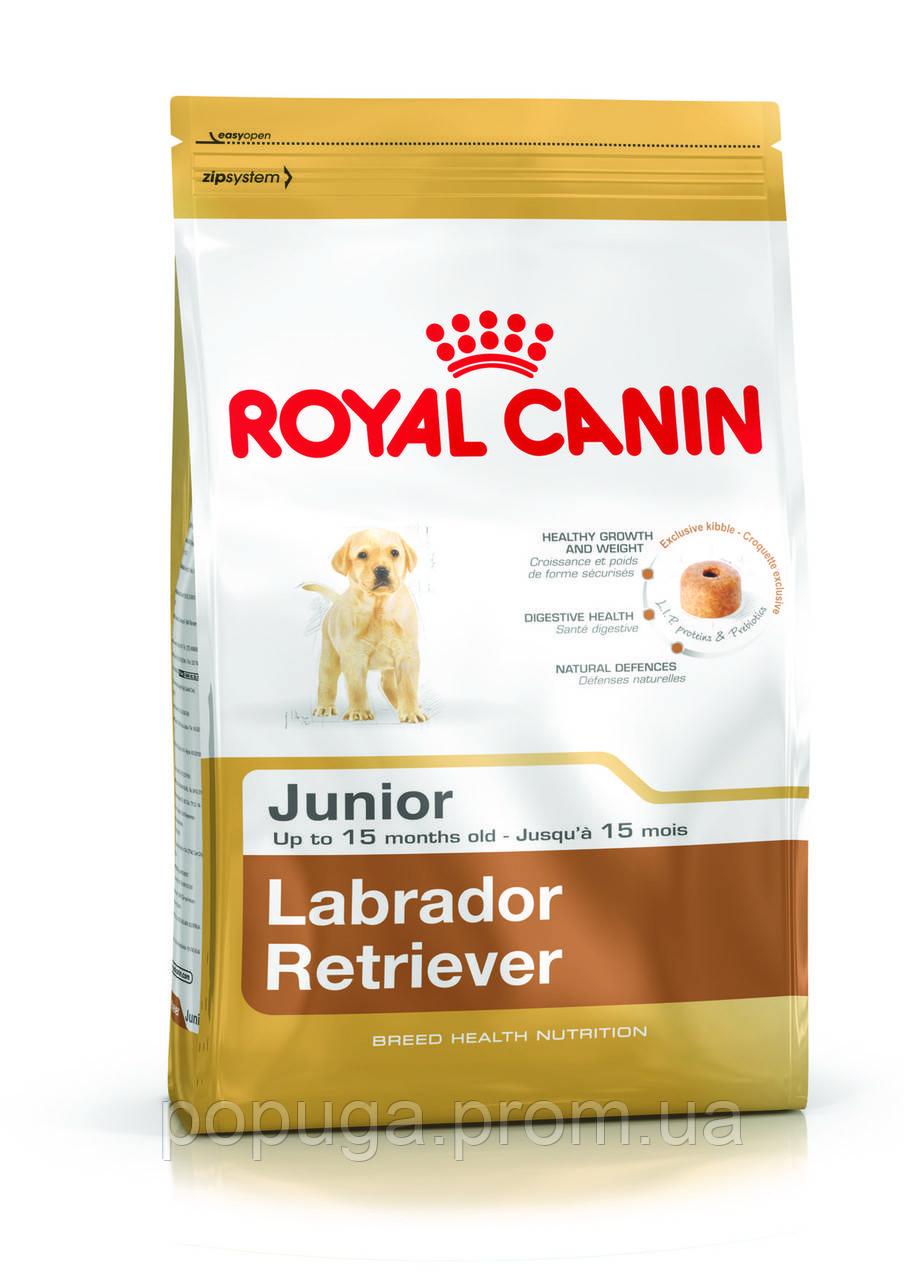 Royal Canin Labrador Retriever Junior корм для лабрадора, 12 кг