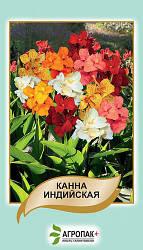 Семена Канна индийская 5 семян W.Legutko 6062