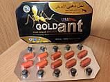 GOLD ANT ЗОЛОТОЙ МУРАВЕЙ ПРЕПАРАТ ДЛЯ ПОТЕНЦИИ 10 таблеток, фото 2