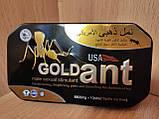GOLD ANT ЗОЛОТОЙ МУРАВЕЙ ПРЕПАРАТ ДЛЯ ПОТЕНЦИИ 10 таблеток, фото 3