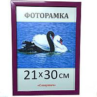 Фоторамка ,пластиковая, 30*40, рамка, для фото, дипломов, сертификатов, грамот, картин, 1611-81