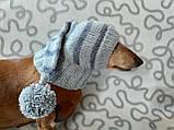 Шапка Санты для маленькой собаки универсальная, фото 4