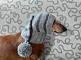 Шапка Санты для маленькой собаки универсальная, фото 6