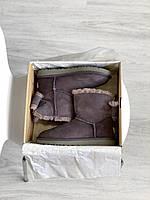 Жіноча зимове взуття Уггі з бантом. Комфортні уггі для дівчат MINI BAILEY BOW II замшеві.