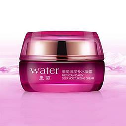 Крем для обличчя з екстрактом хризантеми зволожуючий BIOAQUA Water