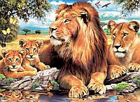 """Набор алмазной вышивки мозаики """"Львы - Крепкая семья"""""""