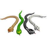 Змія радіокерована реалістична 38см акумуляторна Rattle Snake, фото 3