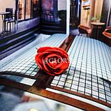 """Шпильки для волосся з квітами троянди """"Tender Rose"""", 6 шт, фото 8"""