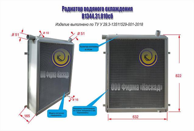Радиатор водяной В1344.31.010 сб, фото 2