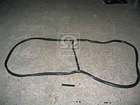 Ущільнювач скла вітрового КАМАЗ (вир-во БРТ) (арт. 5320-5206054-01)