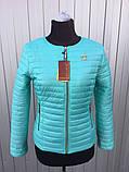 Женская демисезонная куртка,размеры:42-66., фото 2
