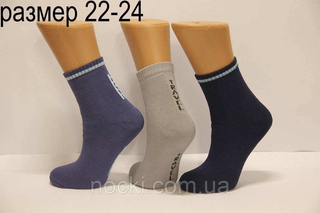 Детские носки махровые для подростков Стиль люкс  22-24  503