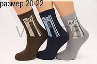 Дитячі шкарпетки махрові для підлітків Стиль люкс 20-22 843(410)