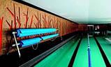 Бесхлорная система обеззараживания  Гидролизер AQUASCENIC  до 65 м3 Premium для частных бассейнов, фото 3