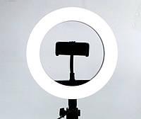 Кольцевая LED лампа для селфи с пультом. диаметр 20 см. Ring Supplementary Lamp