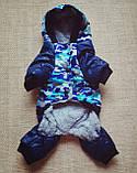 Комбинезон зимний для собак Синий XXL, фото 2