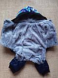 Комбинезон зимний для собак Синий XXL, фото 3