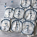 Бодики с цифрами на каждый месяц до года 15. Размер 1, 2, 3 мес, 4, 5,6, 7, 8 мес, 9, 10 мес, 11, 12 мес, фото 2