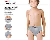 Плавки трусы для мальчика, 2 шт, Indena