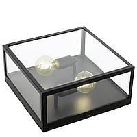 Настенно-потолочный светильник Eglo Charterhouse черный металл, стекло 2хЕ27