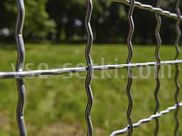 Сітка вольерная канілірована цинк. Осередок:60х60, Дріт:5,0 мм, Аркуш:1500х2000мм.