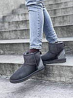Комфортные замшевые угги для девушек. Женская зимняя обувь УГГи невысокие.