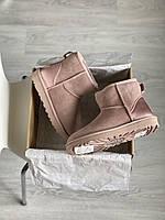 Комфортные замшевые угги для девушек. Женская зимняя обувь розового цвета УГГи невысокие.