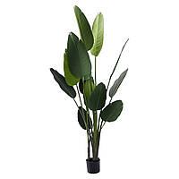Искусственное растение Engard Banana Tree, 190 см (TW-10)