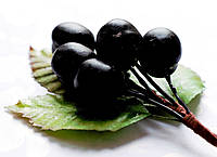 Бутоньерка Слива черная на проволоке с зелеными листиками, декоративные ягоды, фото 1