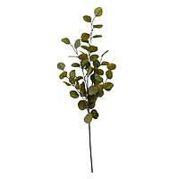 Искусственная ветка Engard Eucalyptus, 90 см (TW-16)