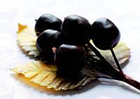 Бутоньерка Слива черная на проволоке с желтыми листиками, декоративные ягоды