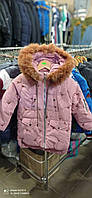 Куртка зима для девочки Фламинго