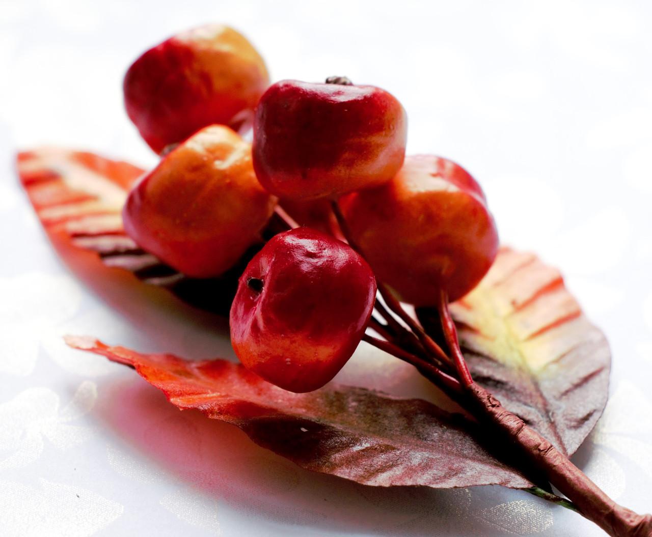 Бутоньерка Мини-яблоки на проволоке с листиками, декоративные ягоды, фото 1